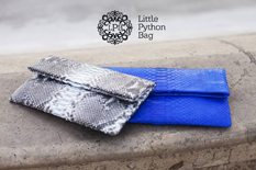 Little Python Bag